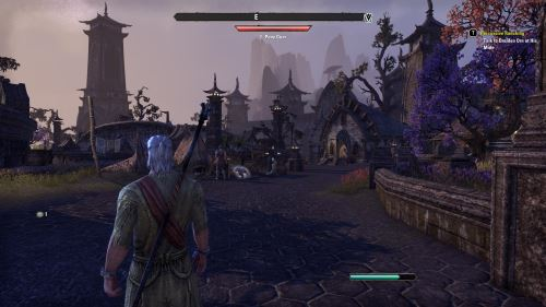 Elder Scrolls MMORPG
